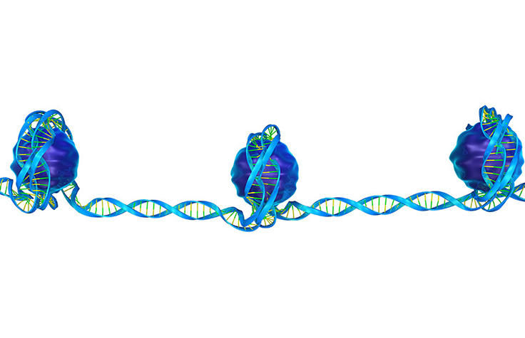 Searching for Cancer Driver Gene Expression Clues in Cell-Free DNA