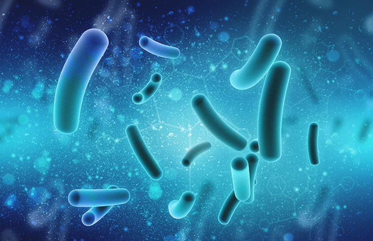 The Time is Now for Microbiome Studies